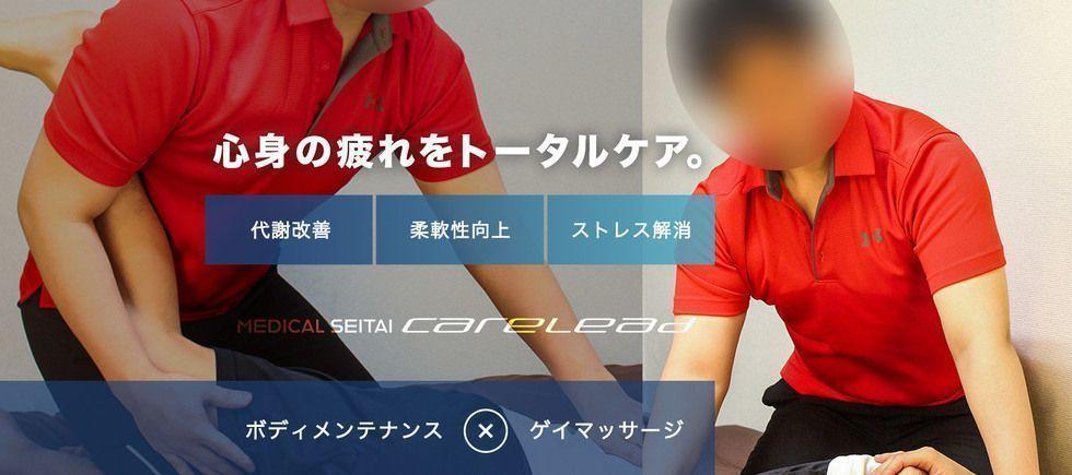 「MEDICAL SEITAI CARELEAD」のカバー写真